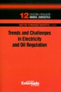 Tapa del libro Trends And Challenges In Electricity And Oil Regulation